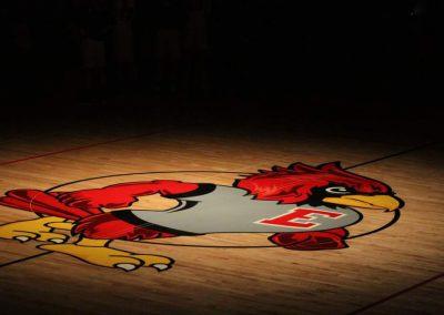 Cardinal Logo on gym floor