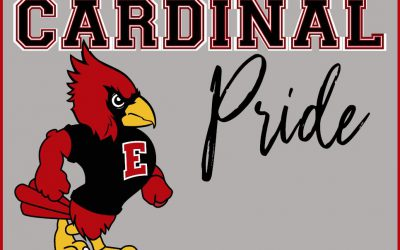 Cardinal & Thunder Pride Yard Signs For Sale!