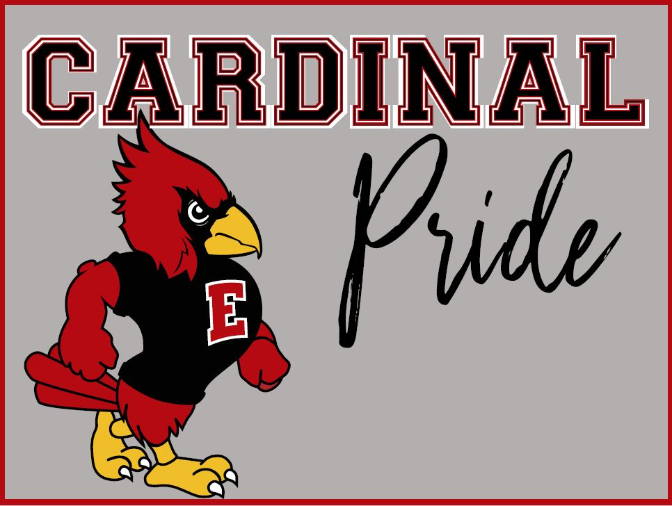 Image of Cardinal Pride Yard Sign
